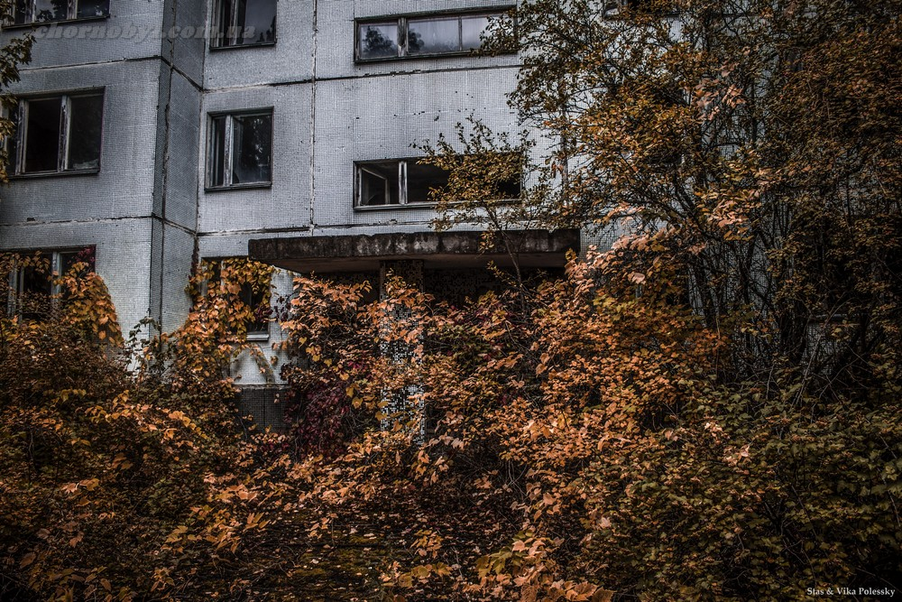 Autumn Pripyat