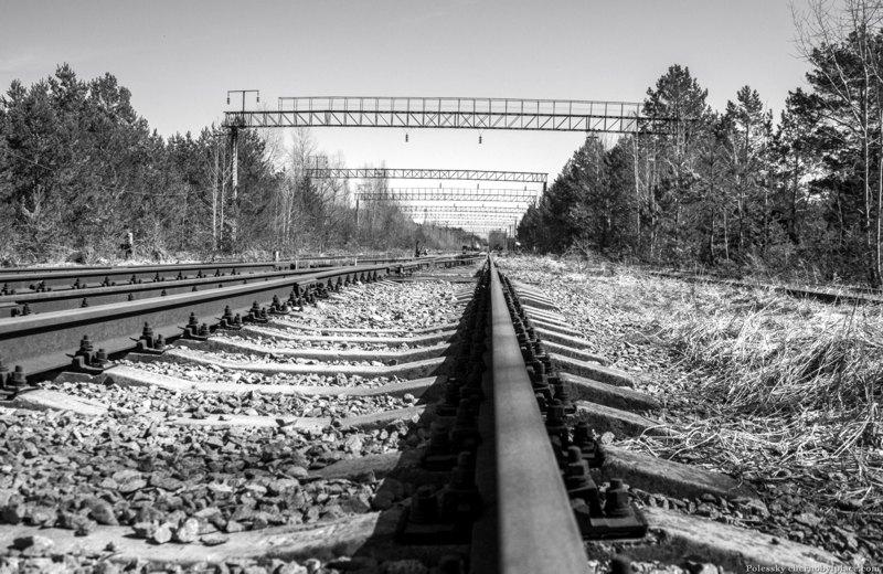 yanov station stalker