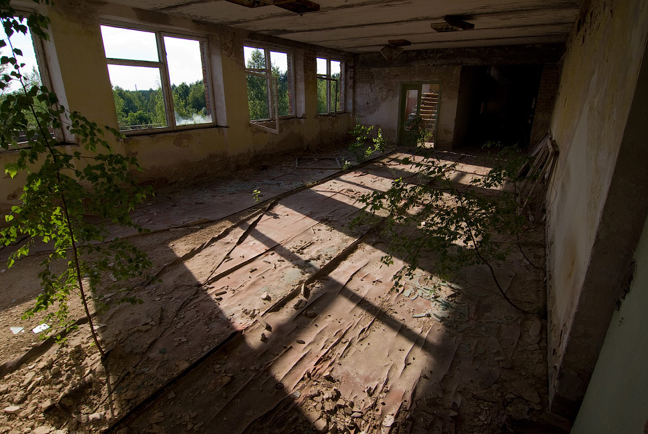 Chernobyl zone of alienation