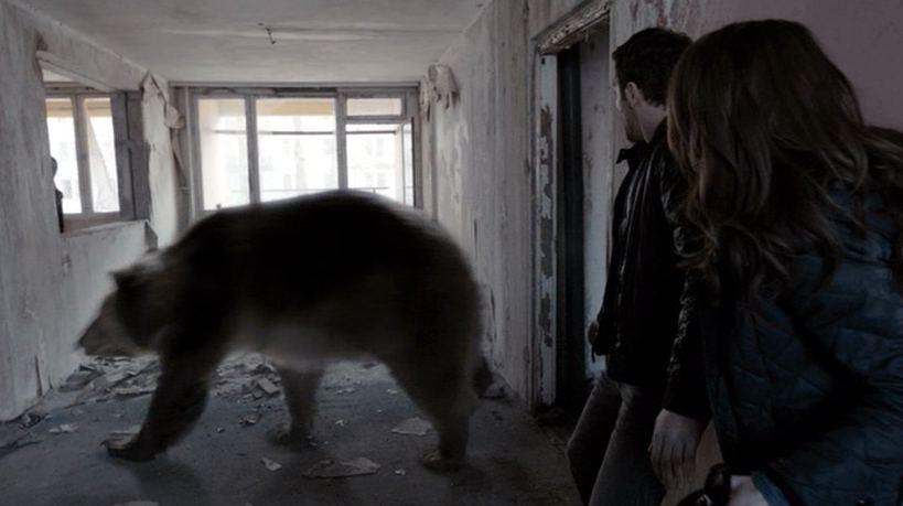 Bear chernobyl diaries